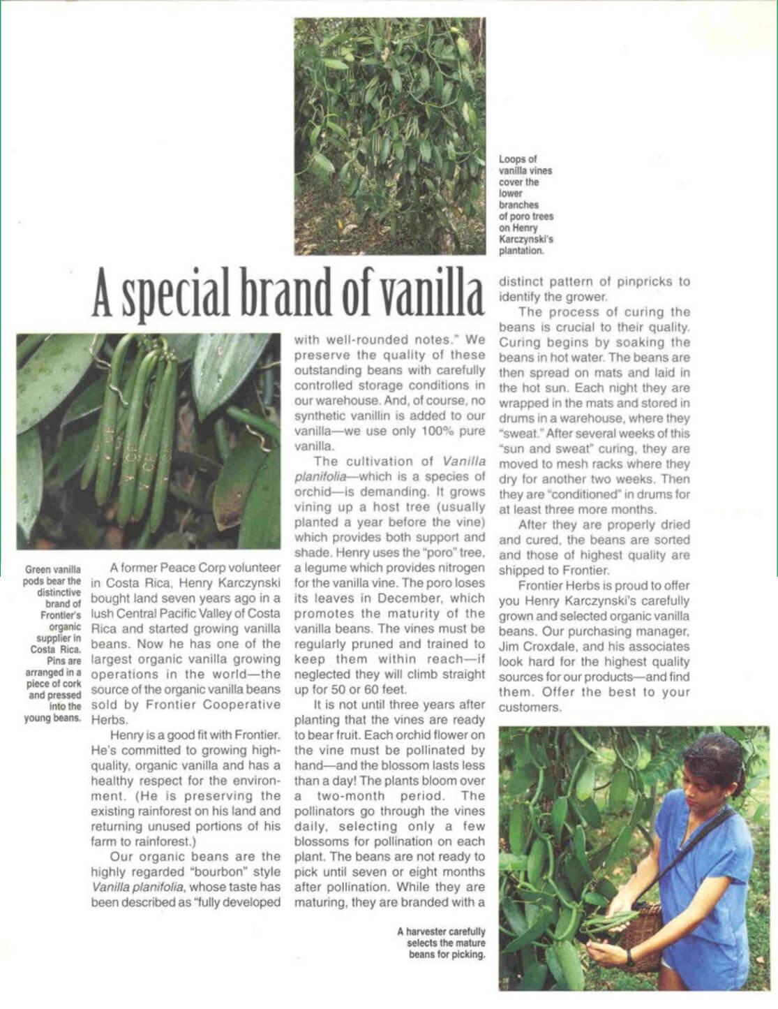 A special brand of Vanilla